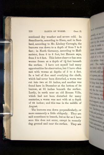 Image of Darwin-F1357-1881-110