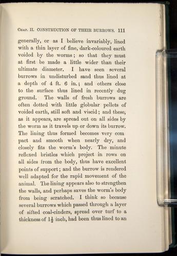Image of Darwin-F1357-1881-111