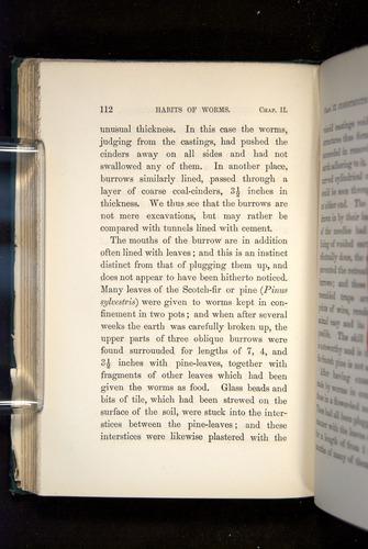 Image of Darwin-F1357-1881-112