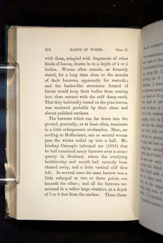 Image of Darwin-F1357-1881-114