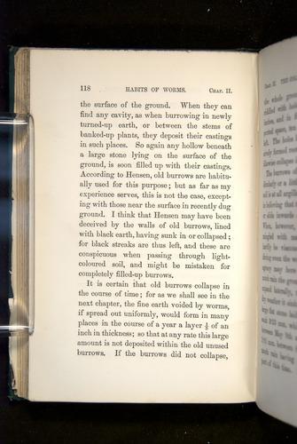 Image of Darwin-F1357-1881-118