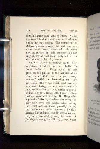 Image of Darwin-F1357-1881-126