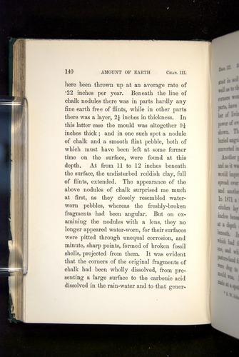 Image of Darwin-F1357-1881-140