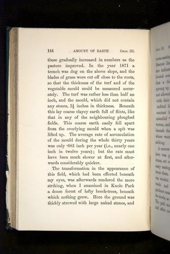 Image of Darwin-F1357-1881-144