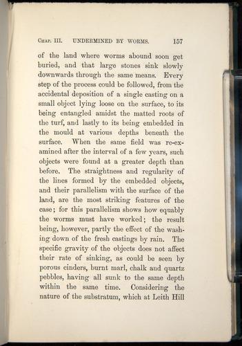 Image of Darwin-F1357-1881-157