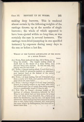 Image of Darwin-F1357-1881-161
