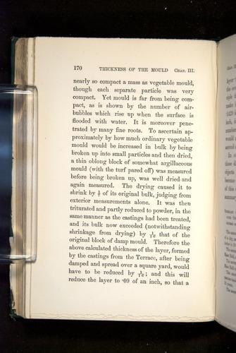 Image of Darwin-F1357-1881-170