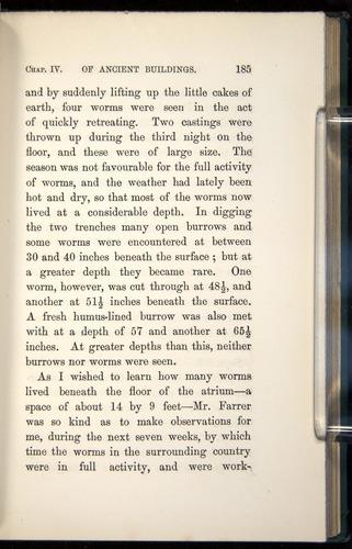 Image of Darwin-F1357-1881-185