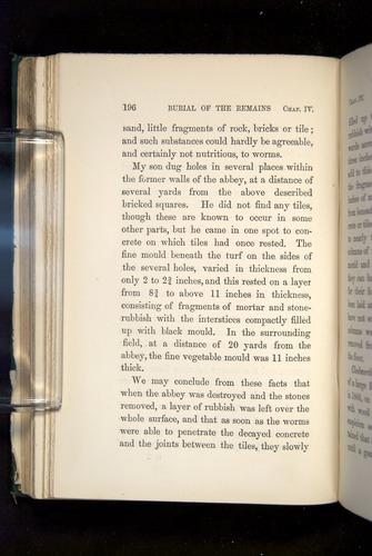 Image of Darwin-F1357-1881-196
