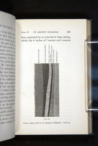 Image of Darwin-F1357-1881-205