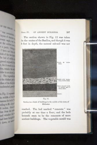 Image of Darwin-F1357-1881-207