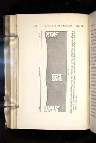 Image of Darwin-F1357-1881-216