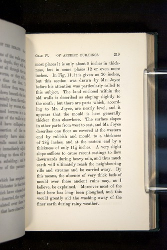 Image of Darwin-F1357-1881-219