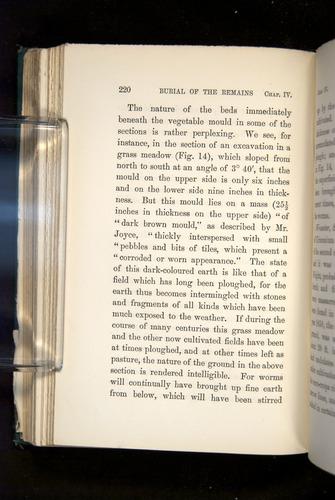 Image of Darwin-F1357-1881-220