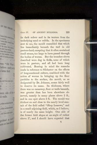 Image of Darwin-F1357-1881-225