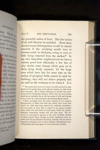 Image of Darwin-F1357-1881-245
