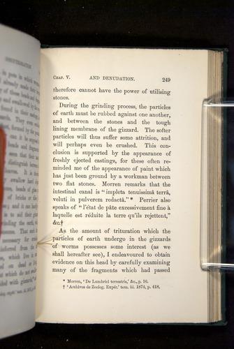Image of Darwin-F1357-1881-249