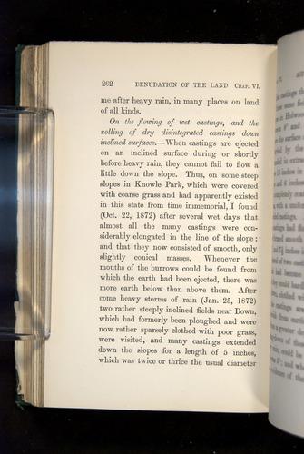 Image of Darwin-F1357-1881-262