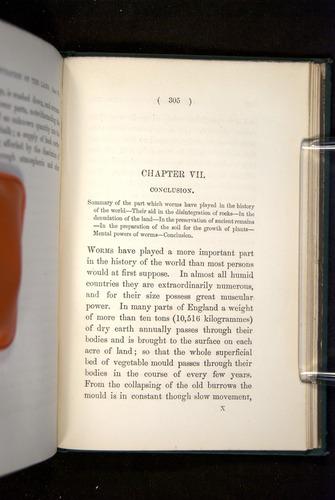 Image of Darwin-F1357-1881-305