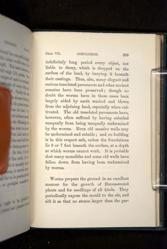 Image of Darwin-F1357-1881-309