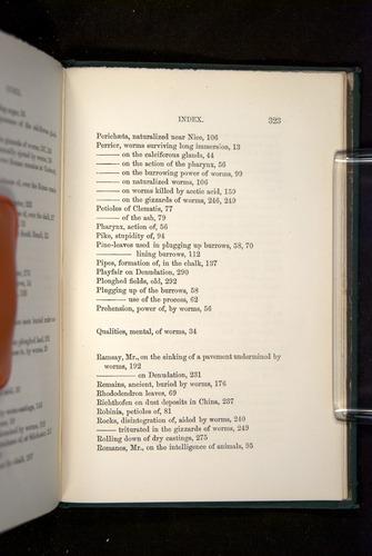 Image of Darwin-F1357-1881-323