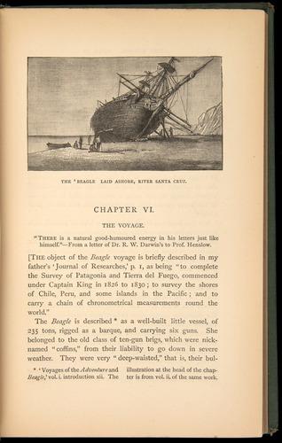 Image of Darwin-F1453.1-1887-217