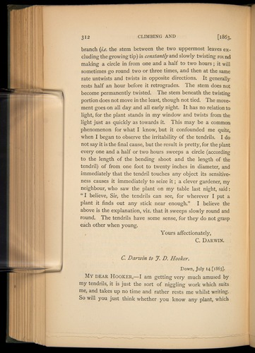 Image of Darwin-F1452.3-1887-v3-312