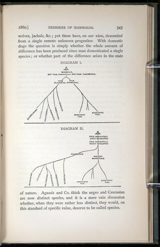 Image of Darwin-F1453.2-1887-00343