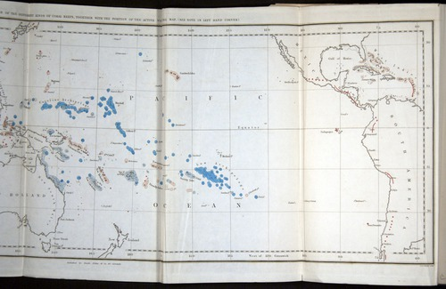 Image of Darwin-F271-1842-000-tp1v-f1-b
