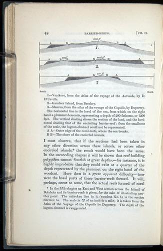 Image of Darwin-F271-1842-00048