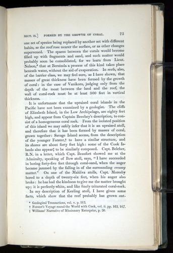 Image of Darwin-F271-1842-00073