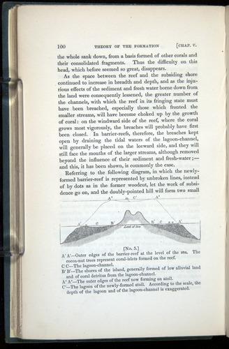 Image of Darwin-F271-1842-00100