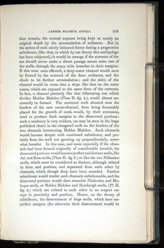 Image of Darwin-F271-1842-00109