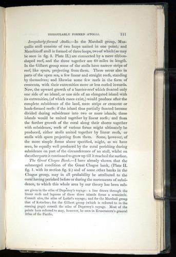 Image of Darwin-F271-1842-00111