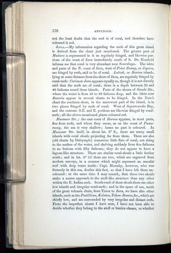 Image of Darwin-F271-1842-00176