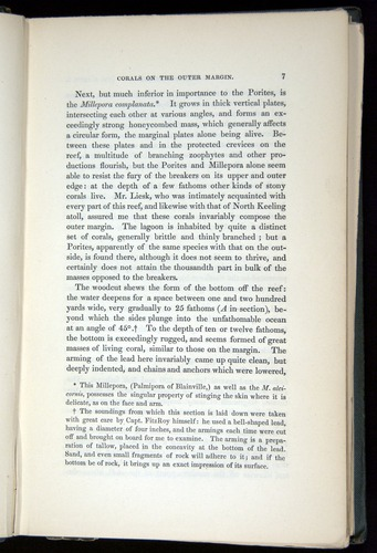 Image of Darwin-F271-1842-007