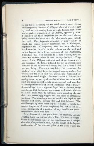 Image of Darwin-F271-1842-008