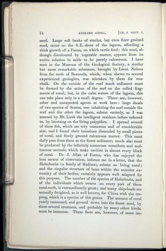 Image of Darwin-F271-1842-014