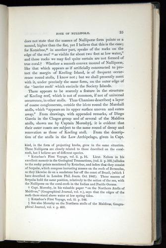 Image of Darwin-F271-1842-025