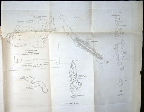Image of Darwin-F271-1842-214-f02