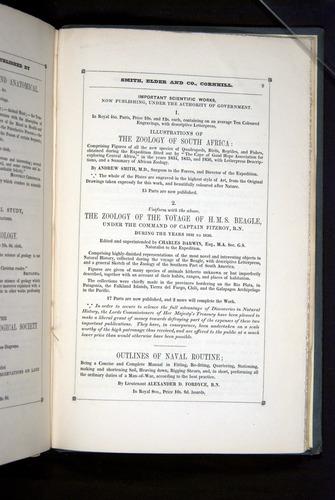 Image of Darwin-F271-1842-zzz-a09