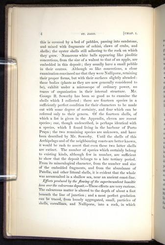 Image of Darwin-F272-1844-00004