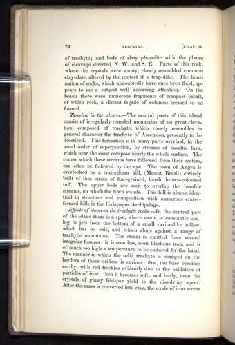 Image of Darwin-F272-1844-00024