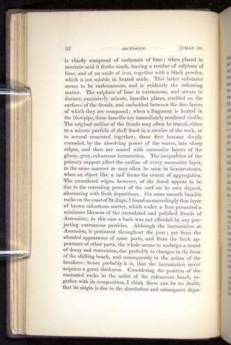 Image of Darwin-F272-1844-00052