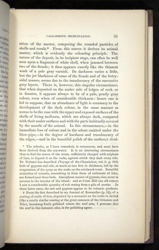 Image of Darwin-F272-1844-00053