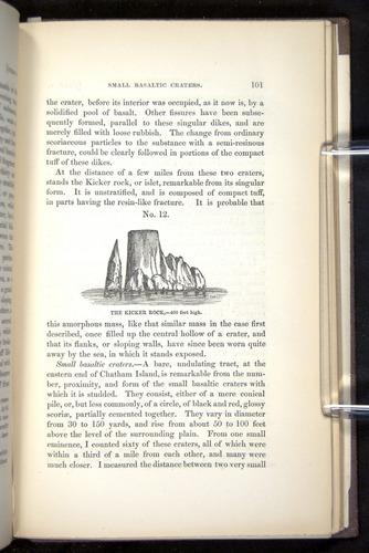 Image of Darwin-F272-1844-00101