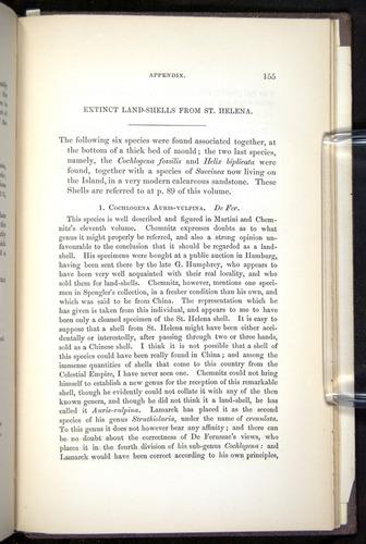 Image of Darwin-F272-1844-00155
