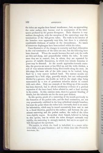 Image of Darwin-F272-1844-00162