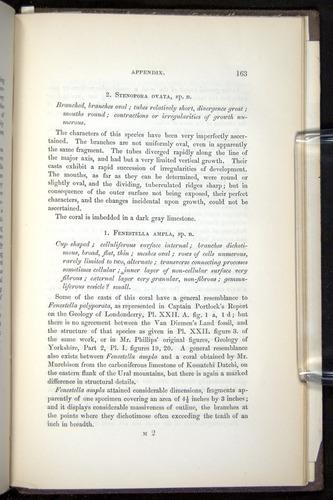 Image of Darwin-F272-1844-00163