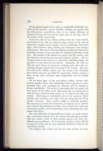 Image of Darwin-F272-1844-00164